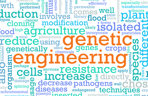 understanding genetic engineering Note: citations are based on reference standards however, formatting rules can vary widely between applications and fields of interest or study the specific requirements or preferences of your reviewing publisher, classroom teacher, institution or organization should be applied.