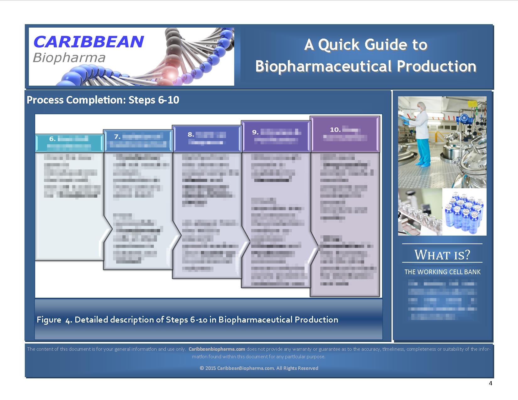 BioRxProductionStepsPg4Blur_032015